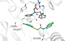 An artificial oxygenase built from scratch